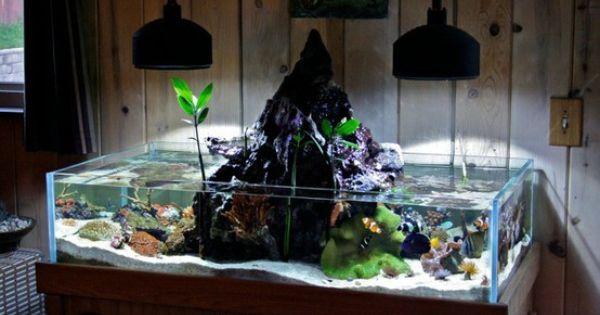 Cool fish tank pets pinterest fish fish tanks and for Cool fish tank