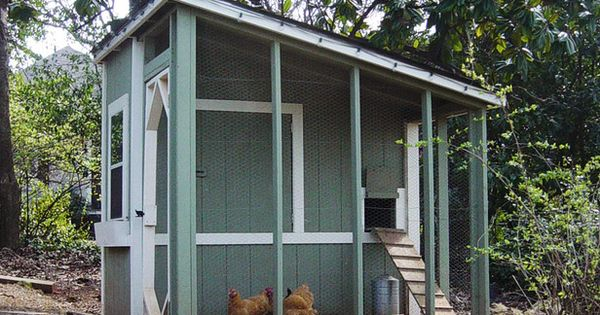 Chic Chicken Coop in Pet-Friendly Backyards: Stylish Outdoor Structures for Animals from