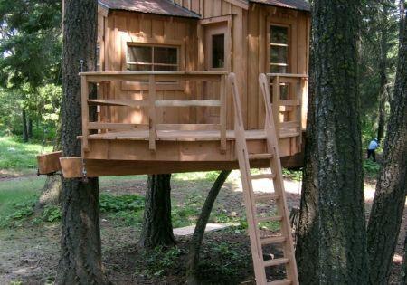 50 Kids Tree house Designs. [Tree house idea for Erik.]