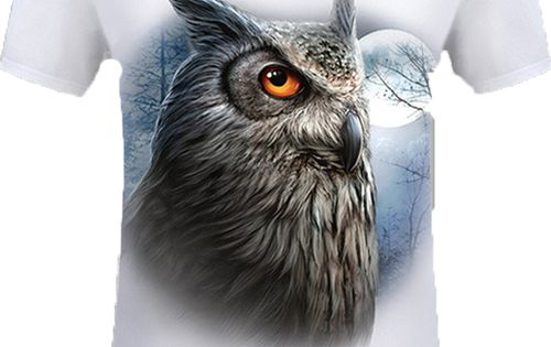 Men Night Owl Short Sleeve White T Shirt Owl T Shirt Short