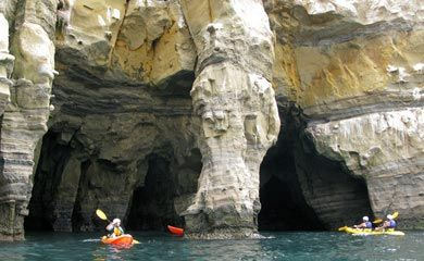 La Jolla Sea Cave Kayaking Tours 80 For A Two Person Kayak