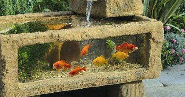 An above ground koi pond wow diy fish ponds and for Above ground koi fish pond