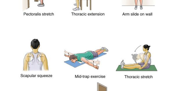 mid back pain exercises pdf