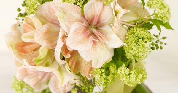 Pink Amaryllis | Pink Wedding Flowers | Real Simple