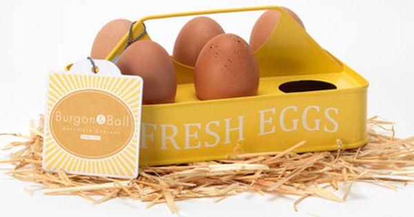 Eurohike Egg Carrier