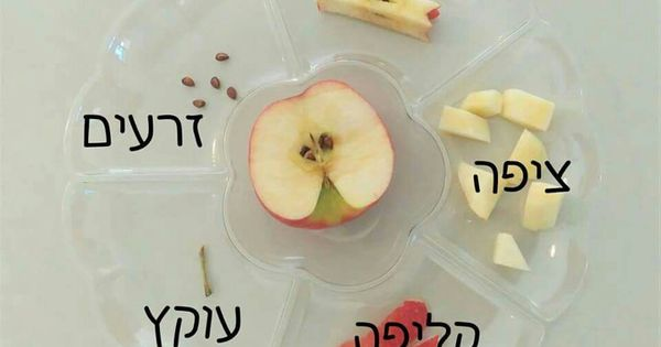 what to cook for rosh hashanah dinner