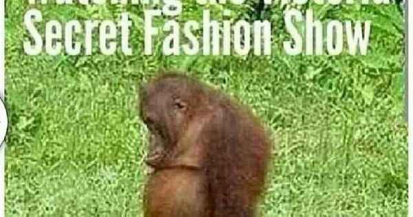 How I feel watching the Victoria's Secret Fashion Show....Sad, but oh so