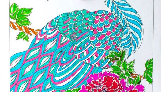 Finished And Colored Peacock Coloring Page