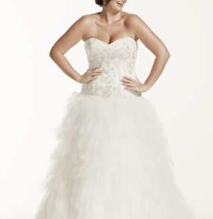 Tulle Plus Size Wedding Dress With Ruffled Skirt Drop Waist Wedding Dress Best Wedding Dresses Bridal Gowns