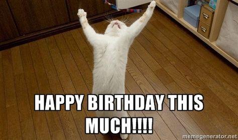 Funny Happy Birthday Lol Cat Happy Birthday Mmd Heidibetts