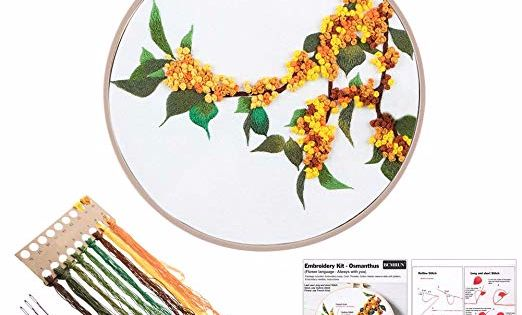 Embroidery Hoop Jakaranda Color Threads and Tools Kit for Home Decor Embroidery Kit Creative Flower Hand Embroidery Cross Stitch Starter Needlepoint Crafts Kit with Color Pattern Cloth