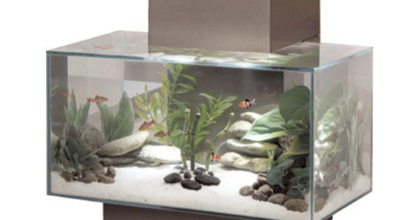 A fluval edge aquarium will bring a great zen feeling to for Zen fish tank