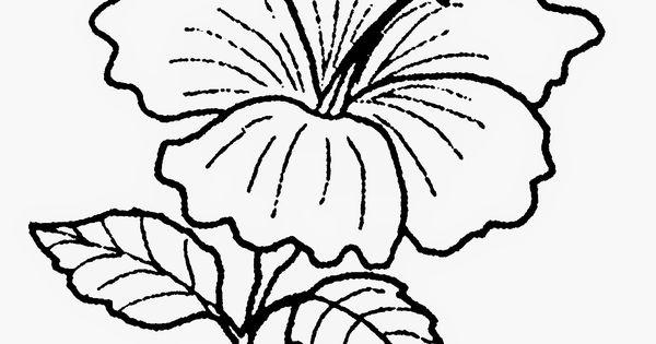 Gambar Bunga Raya Untuk Diwarnai Contoh Gambar Bendera Malaysia Gambar Ade Gambar Bunga Kartun Hitam Putih Untuk Mewarnai Flowe Di 2020 Lukisan Lukisan Bunga Bunga