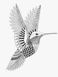 Mandala Kleurplaten Vogels.Afbeeldingsresultaat Voor Volwassen Kleurplaten Zentangle
