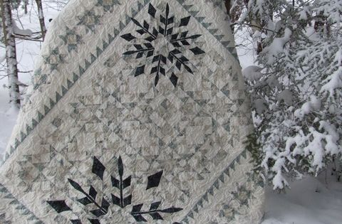 Winter Joy 68 X 86 Quot Pieced Quilt With Appliqued
