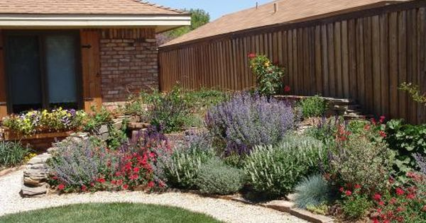 Plants That Are Pretty And Don T Need Much Water Perfect Avec