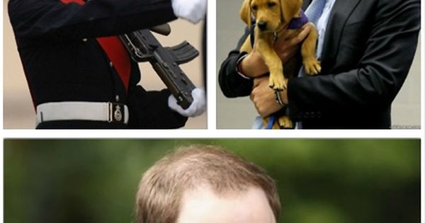BAHAHA! What's more awesome than Prince William, Prince Harry, and The Lion