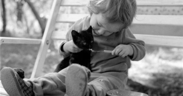 Precious... kitten kids animals