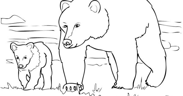 Grizzly Bear Family Coloring Pages PATTERN n DESIGN are