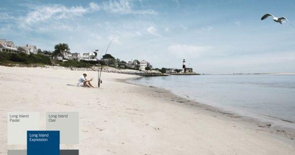 Association de couleurs base de bleu gamme long island for Long island dulux valentine