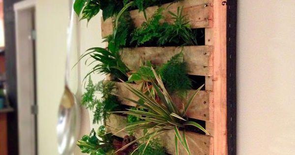 Un Jardin Vertical Avec Une Palette Jardin Pinterest Jardins Planters Et Herbes Aromatiques