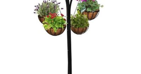 Cobraco 12 In Metal Hanging Basket With Tree Stand 4 Pack Hb4t A The Home Depot Plants Plant Stand Hanging Baskets