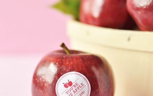 You're the apple of my eye. These food-safe stickers are the perfect