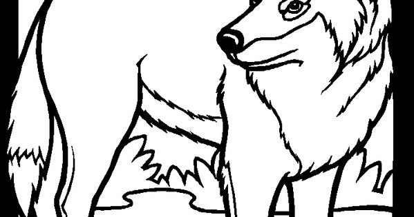 Prairie animals wolf coloring book pages Little House