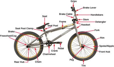 Need To Kno This Bmx Bike Parts Bmx Bikes Bmx Freestyle