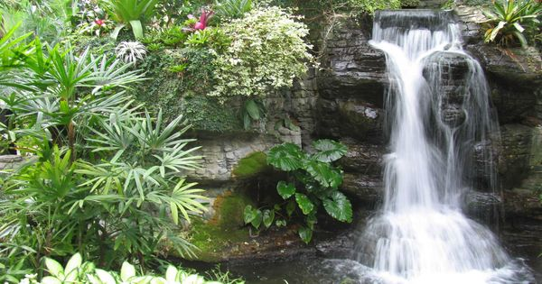 Water Garden Waterfall Design Ideas Make your landscape interesting with the use