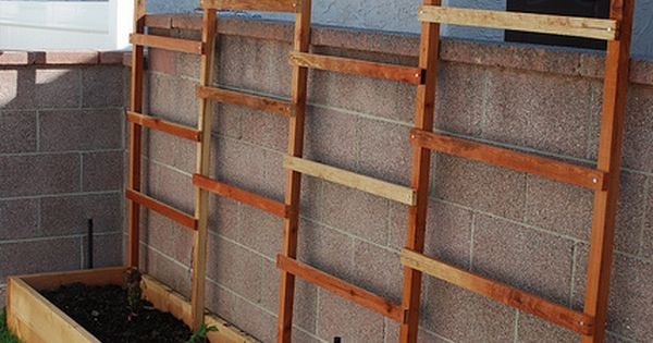Planter Boxes Along Fence Privacy Screens