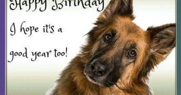 Pin On German Shepherd Quotes Sayings Signs Ect