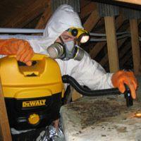 Attic Restoration Cleanup Of Wildlife Animal Waste And Insulation In Attic Attic Renovation Attic Remodel Termite Control