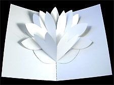 How To Make A Pop Up Water Lily Card Robert Sabuda Method Pop Up Flower Cards Pop Up Cards Mothers Day Cards Homemade