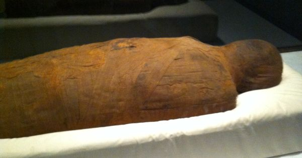 wrapped body | mummy exhibit, other misc field museum pics | Pinterest