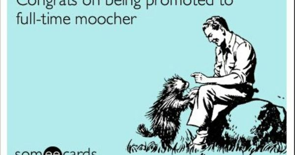 Annoying People Quotes Funny Pet Peeves