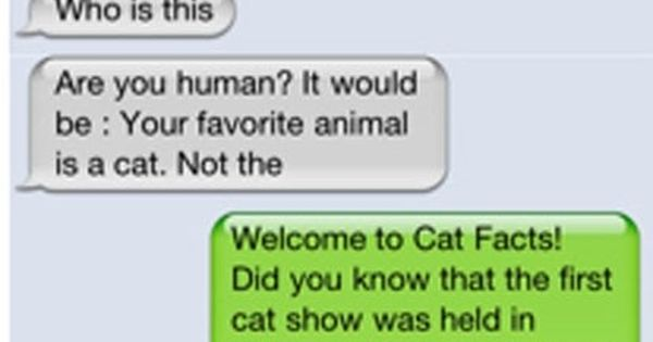 Cat Facts... And texts... Both so funny!