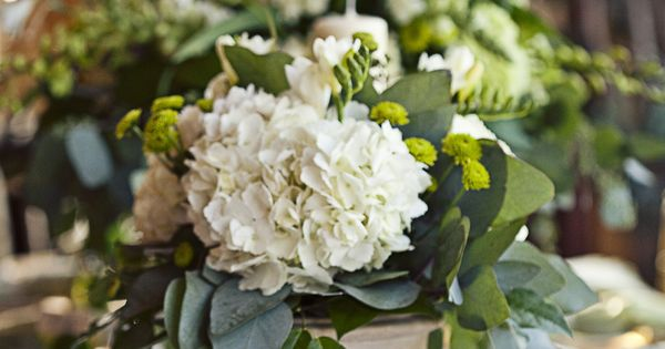 Gorgeous green potted hydrangea centerpiece photos by lsd photography farm weddings - Care potted hydrangea ...