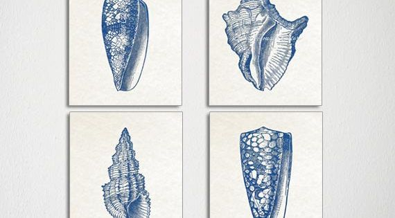 Seashell Art Blue Seashell Prints By Beachhousegallery