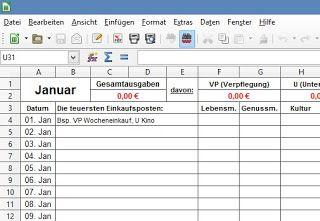 Klassisches Haushaltsbuch Im Excel Format Haushaltsbuch Vorlage Haushaltsbuch Haushaltsbuch Excel Vorlage