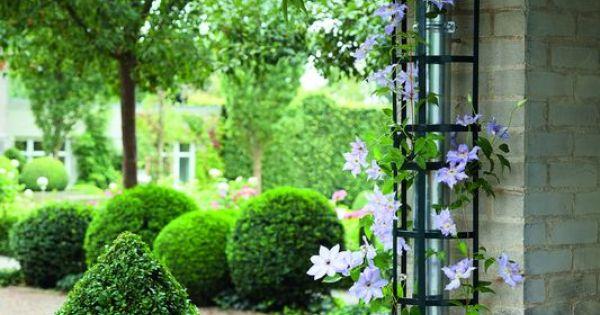 trellis support pour plantes grimpantes pour goutti res. Black Bedroom Furniture Sets. Home Design Ideas