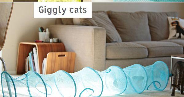 ikea aufbewahrung fangst f r katzen f r die katz pinterest ikea aufbewahrung gefangen und. Black Bedroom Furniture Sets. Home Design Ideas