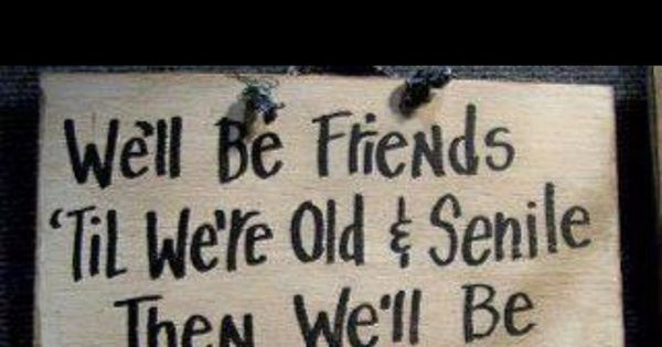 Funny Bestfriends Quotes old new friends