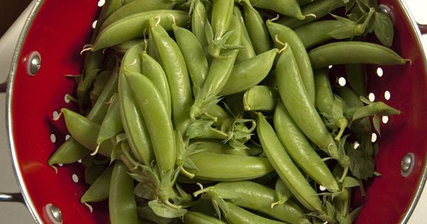 ... canning | Pickled | Pinterest | Snap Peas, Sugar Snap Peas and Sugar