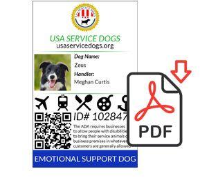 Usa Service Dog Registry Service Dog Registration And Related Products Service Dog Registration Service Dogs Emotional Support Dog