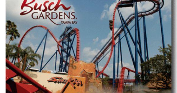 52e03a2dc6c11ac606cd256a1a830e20 - How Crowded Is Busch Gardens Tampa