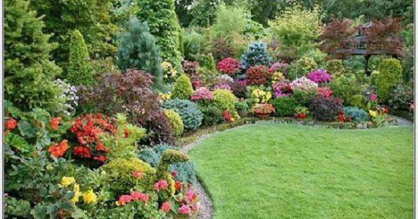 Low maintenance flowering shrubs attractive small yard for Best small bushes for landscaping