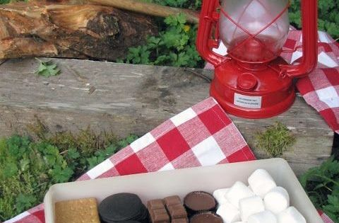 Camping Tips, Tricks, and Recipes: SMores Fun. Keep s'more ingredients in a