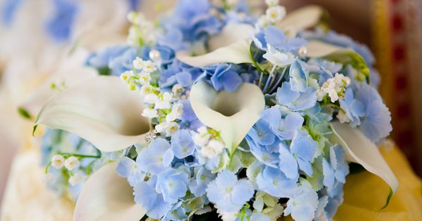 For a lighter blue could use Hydrangea florets bouquet ivory calla lilies,