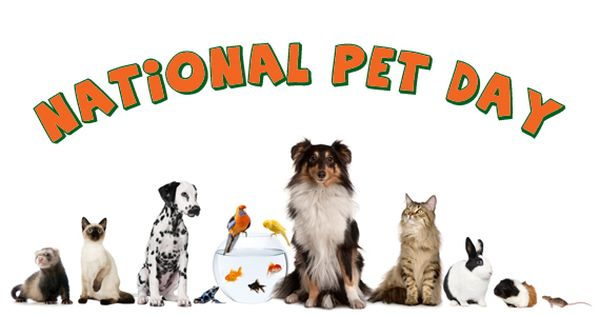 Happy National Pet Day Water Cooler Spiceworks National Pet Day Pet Day Love Your Pet Day